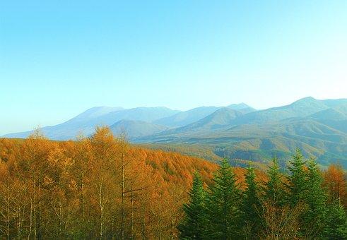 Japan, Nagano Prefecture, Nagano, Torii Pass