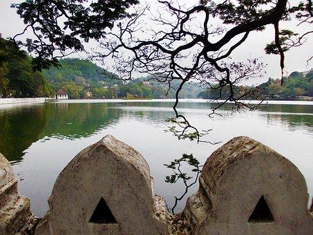 Kandy Lake, Tree, Lake, Park, Sri Lanka, Mawanella