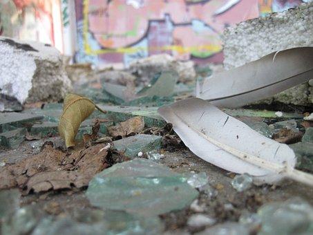 Feather, Glass, Splitter, Shard, Dirt, Destroyed