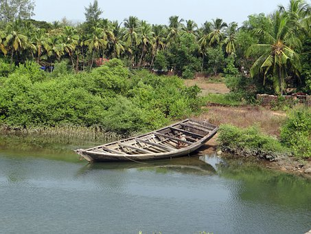 Country Boat, Tidal Creek, Coconut Groves, India