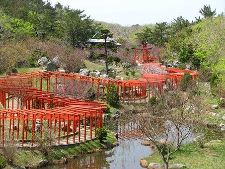 Torii, Red, Shrine, Japan, Takayama Inari