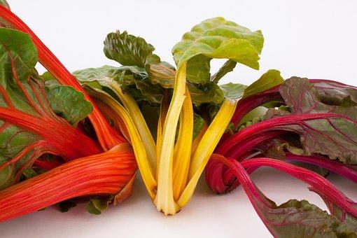 Chard, Beta Vulgaris, Herb Stalk, Vegetables