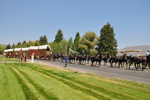 Western, Cowboy, Wagon, Wheel, Rusty, Transportation