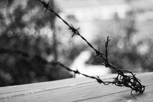 Wire, Prison, The Depth Of The, Barbed Wire, Atmosphere