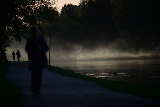 Autumn, Fog, Gloomy, Mystic, Haze, Atmospheric, Misty