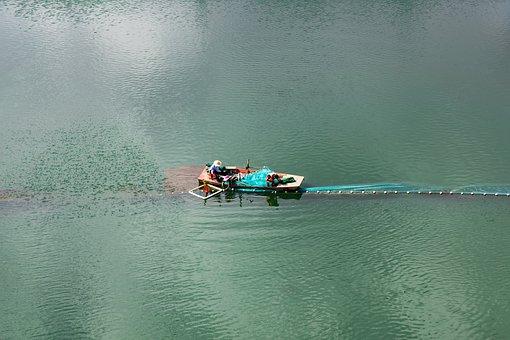 Lake, Fishermen, Boat, Green Water, Aquatic Products