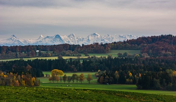 Landscape, Forest, Alps, Field, Fall, Plateau Of Diesse
