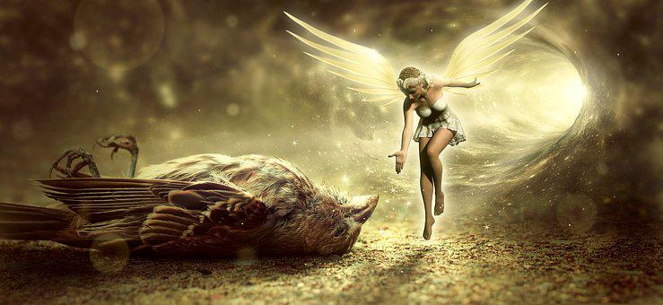 Fantasy, Bird, Death, Angel, Elf, Fee, Tunnel, Light