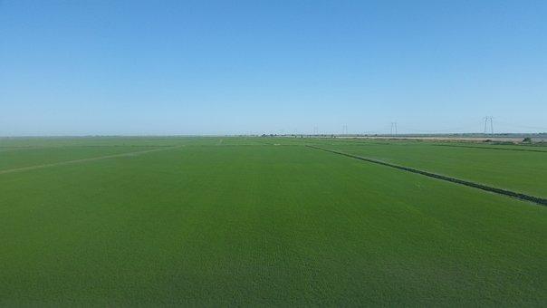 Blue, Sky, Green, Grass, Field, Background