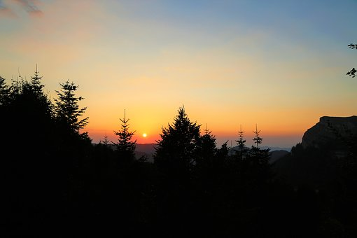 Landscape, Sunset, Forest, Sky, Nature, In The Evening
