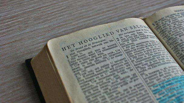 Song Of Songs, Love, Read, Bible, Literature, Learning