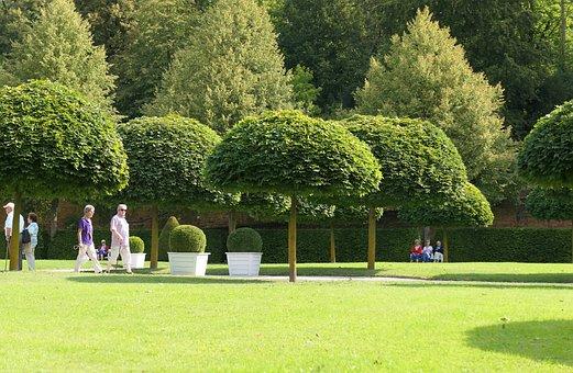 Park, Trees, Nature, Landscape, Summer, Green, Grass