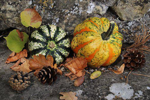 Pumpkins, Autumn, Yellow, Halloween, Vegetables
