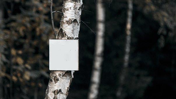 Forest, Whiteboard, Board, Write, Sign, Walk, Tourist
