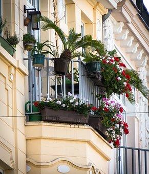 Balcony, Balcony Plants, Old Building, Facade