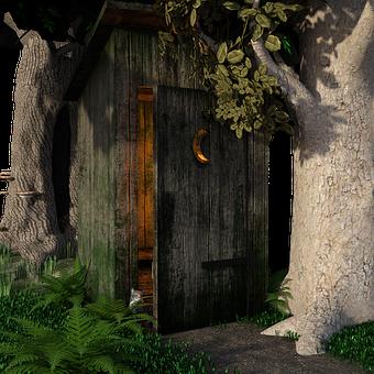 Plus The Toilet, Trees, Landscape, Fairy Tales, Light