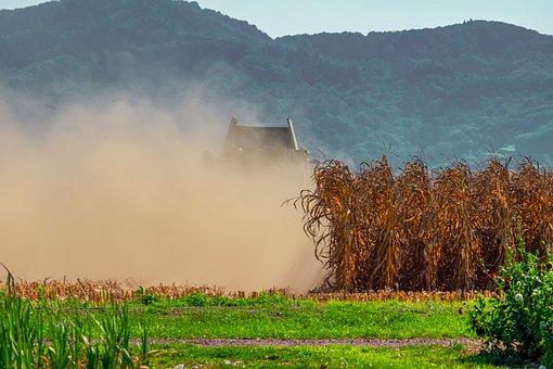Agriculture, Field, Corn, Harvest, Combine Harvester