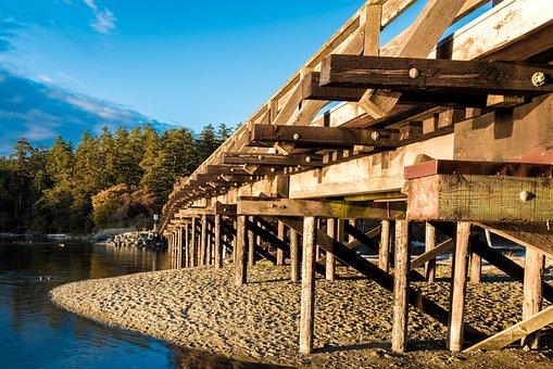 Wooden, Bridge, Lagoon, Sky, Forest