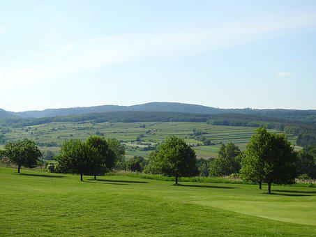 Golf Course, Forest, Wine, Nature, Trees, Landscape