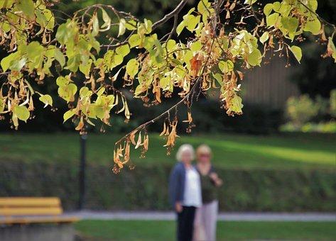 Park, Spacer, Autumn, Para, Mood, People, Foliage