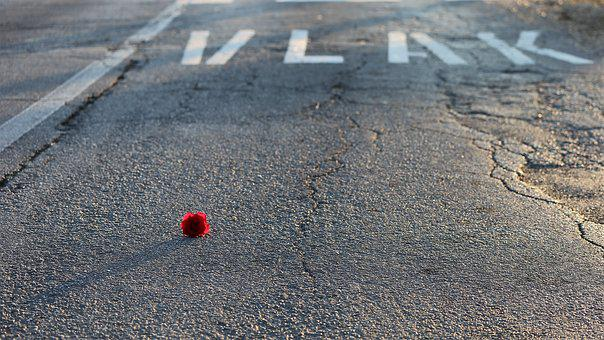 Little Red Rose, Road And Rail Crossing, Attention