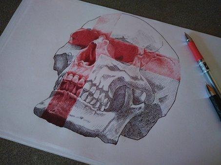 Skull, Double Exposure, Trash Polka, Tattoo, Sketch