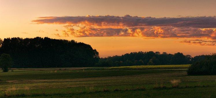 Panorama, Sunset, Nature, Field, Grass, Landscape
