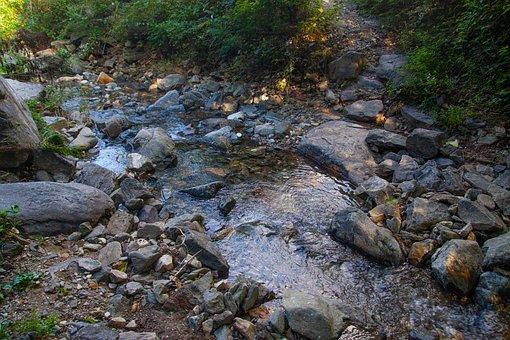 The Creek, Streams, Valley, Nature, Creek, Water