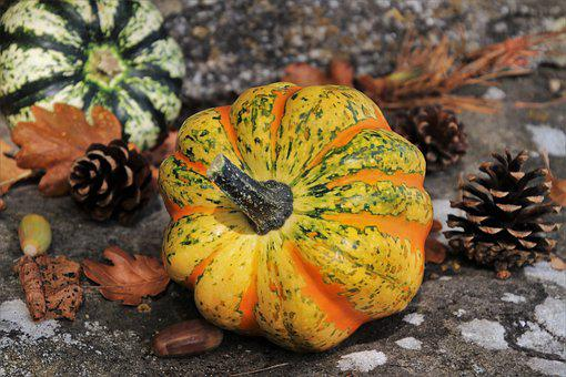 Pumpkins, Autumn, Decoration, Yellow, Halloween