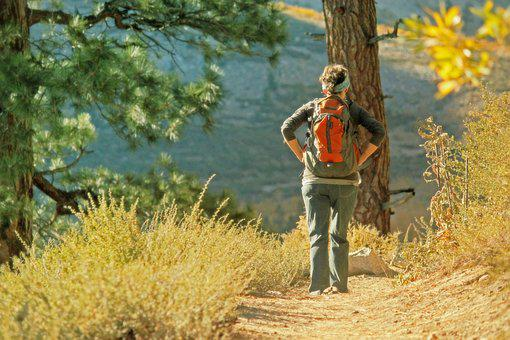 Hiking, Nature, Backpack, Journey, Pathway, Alone