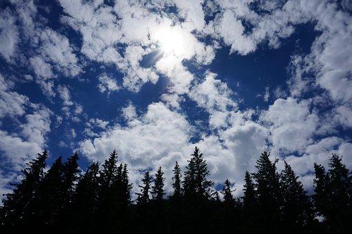 Clouds, Sky, Tree, Nature