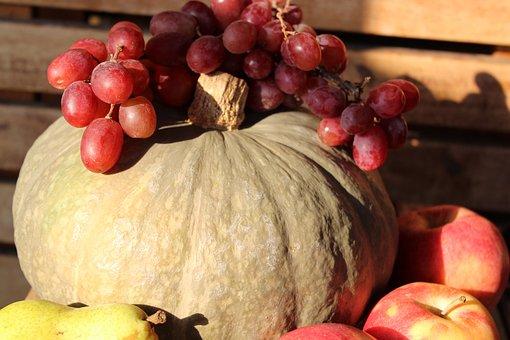 Fruit, Composition, Nature