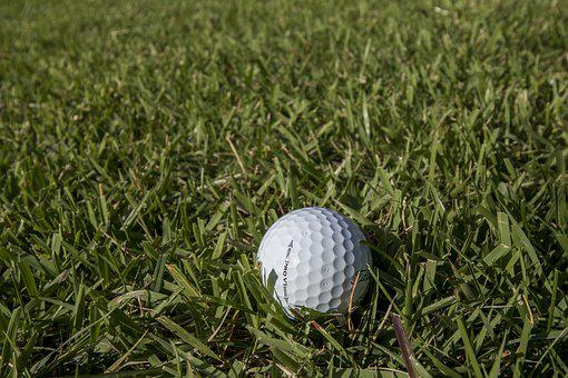 Golf, Green, Field, Grass, Sport, Golfers, Ball, Club