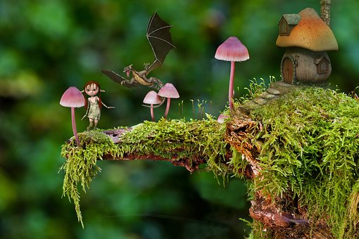 Micro, Mushroom, Free, Fungi, Fantasy, House
