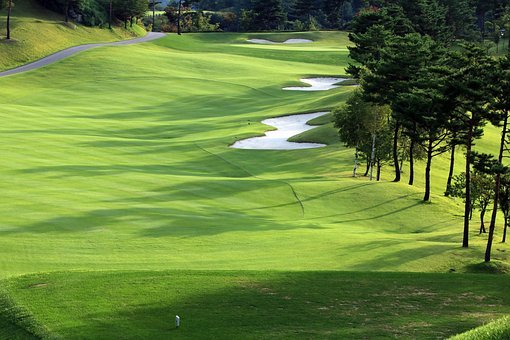 Golf, Green, Field, Grass, Sport, Golfers, Golf Course