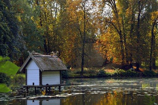 Landscape, Nature, Trees, Park, Castle Park, Pond, Lake