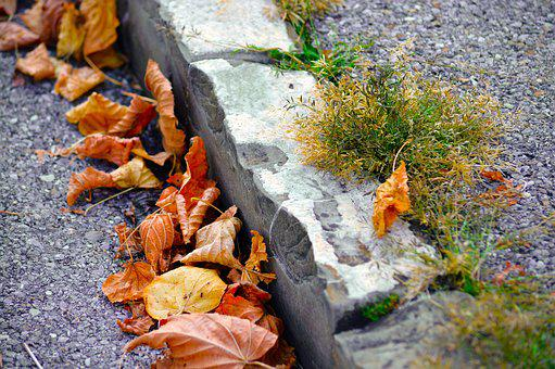 Curb, Roadside, Leaves, Autumn, Side Of The Road