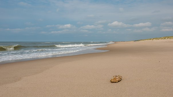 Beach, Denmark, Sea, Nature, Landscape, North Sea