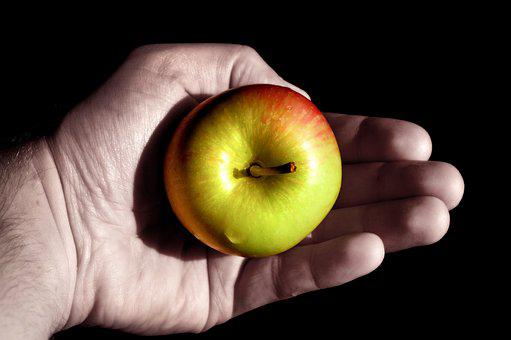 Apple, Hand, Keep, Lying, Adam And Eve, Red, Green