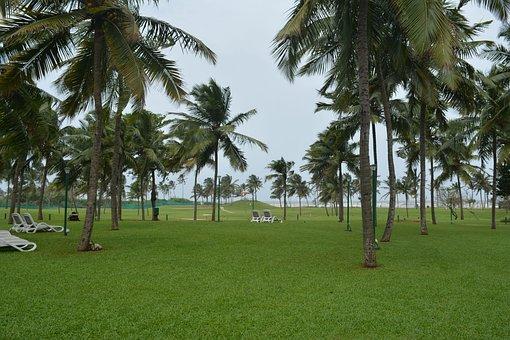 Golf Course, Beach, Nature, Outdoor, Golf, Landscape