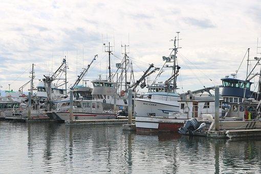 Boats, Marina, Dock