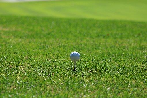 Golf, Golf Course, Grass, Sport, Green, Golfers, Field