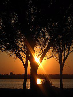 Sunset, Tree, Radius, Flash, Orange, Park, Lake, View