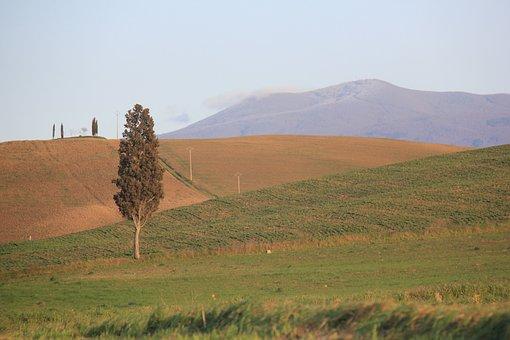 Home Page, Tuscany, Italy