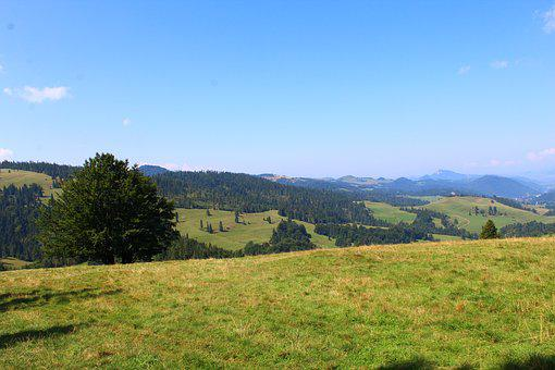 Landscape, Mountains, Forest, Meadow