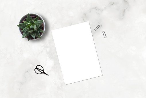 Marble, Paperclip, Mockup, Flatlay, Plant, Ecommerce