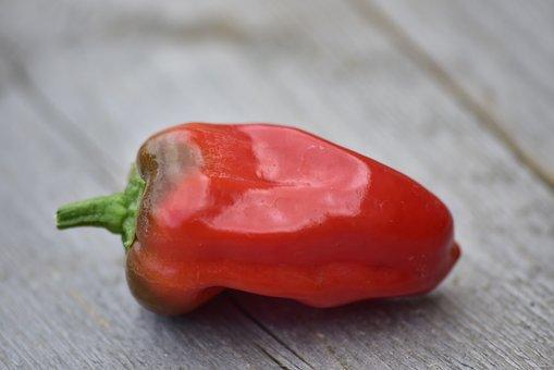 Pepper, Chilli, Wood