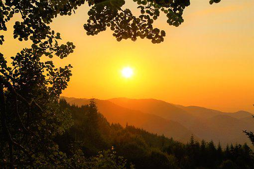 Sunset, Nature, Landscape, Sky, In The Evening, Tree