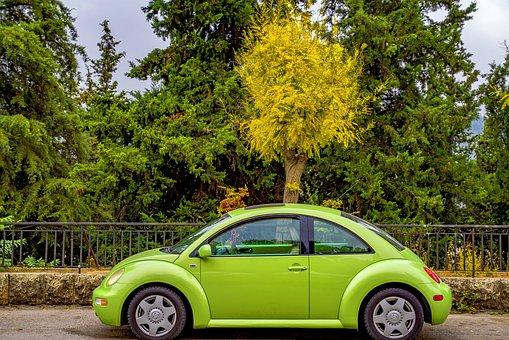 Car, Beetle, Volkswagen, Automobile, Green, New, Clean