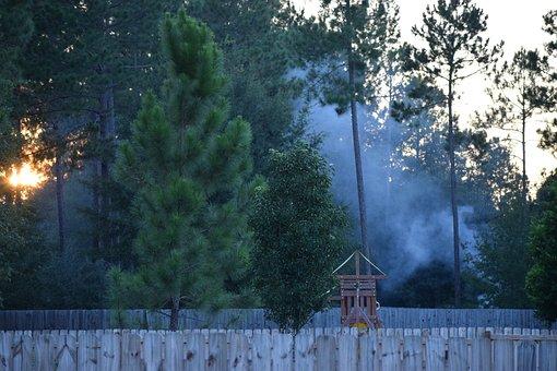 Smoke, Nature, Tree, Cloud, Landscape, Night, Outdoor